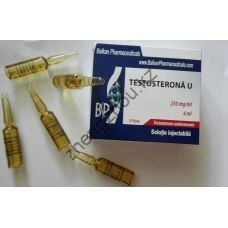 Тестостерон ундеканоат Balkan 10 ампул по 4 мл (250мг /1 мл)