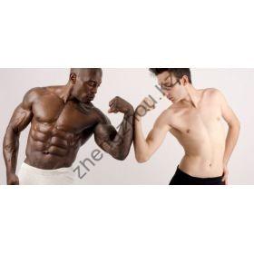 Курс стероидов - Метан,Станозолол и Тамоксифен